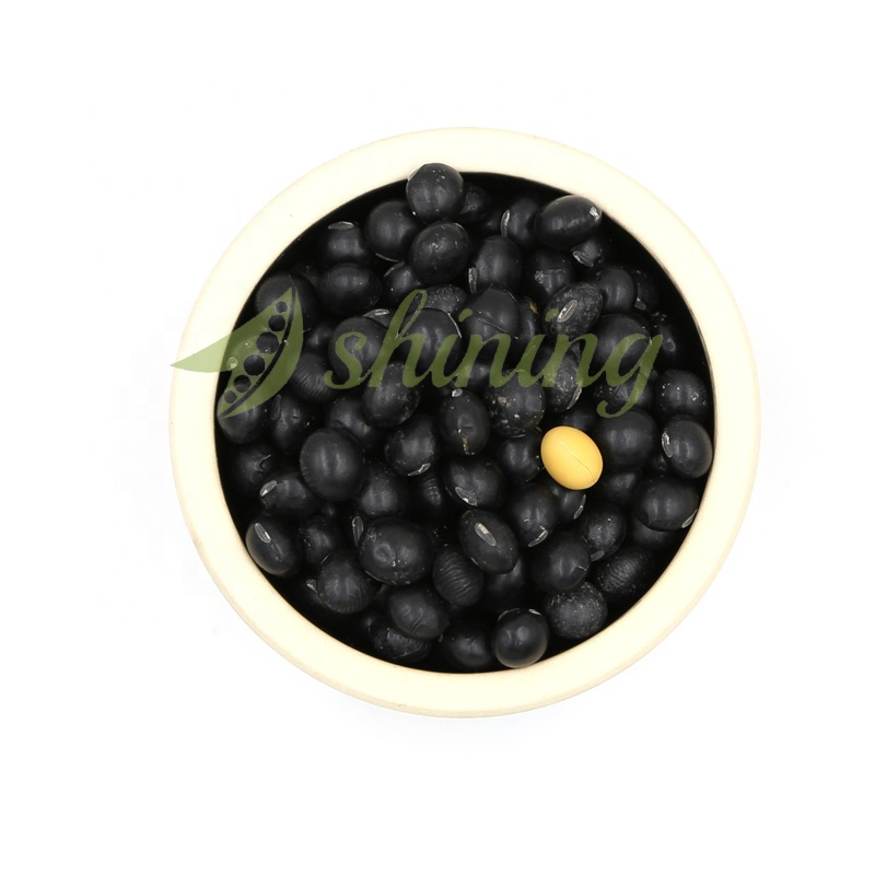 Cheapest Factory price bulk black soybeans export wholesale