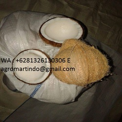 COCONUT FRESH PEELET /SEMI HUSK COCONUT / COCONUT SUGAR (WA +6281326130306 ,E agromartindo@gmail.com)