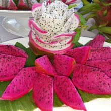 Cheap High quality fresh dragon fruit for sale