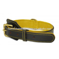 leather dog collar with decorative design