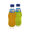 REGINA FRUIT 250 ML
