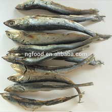 dried anchovy fish with best quality