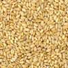 Soft Wheat 12 5 Protein From