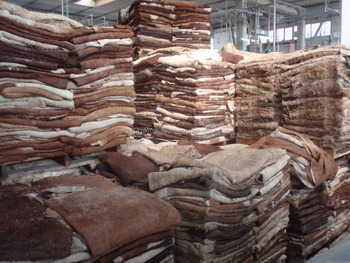 SALTED WET AND DRY COW HIDES