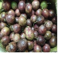 GRADE AAA PASSION FRUIT FOR SALE