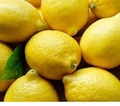 south africa best quality fresh Eureka lemon for sale at good price