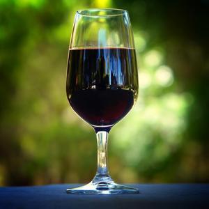NEW Harvest Bulk Varietal Syrah Red Wine From Argentina Mendoza Spain Family