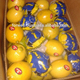 HEY WE HAVE EXCELLENT FRESH LEMONS AT EGYPT