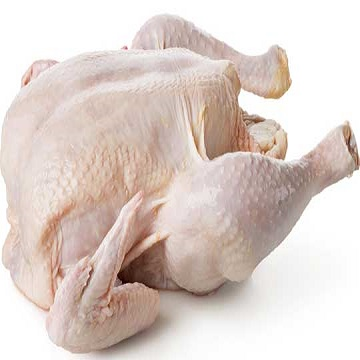 Grade A Ukraine Halal Frozen Whole Chicken, Chicken Parts