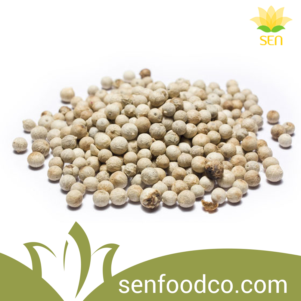 Wholesale White Pepper Vietnam Spices For Export