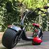 Citycoco Electric Scooter with Type Approval EEC Certificate