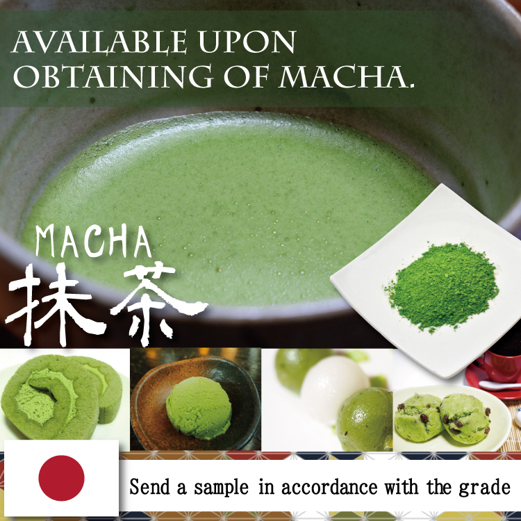 Premium and Healthy organic japanese matcha green tea powder EIKO matcha for pastry making,drink green tea also available