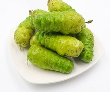 NONI FRUIT/INDIA MULBERRY - THE BEST PRICE IN YEAR