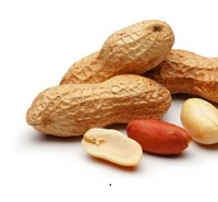 Dry Roasted Peanut - blanched peanut kernels - peanut in shell - raw groundnut