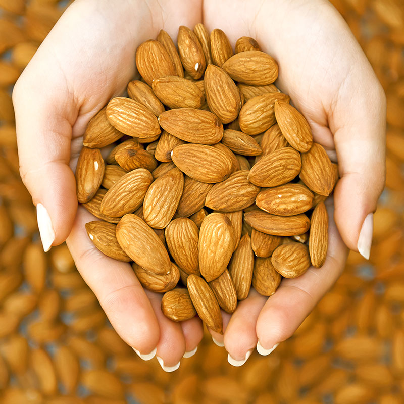 cheap price California almonds for sale