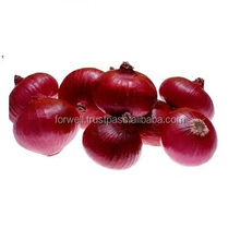 market fresh red onion price, (3-5cm,5-5cm)