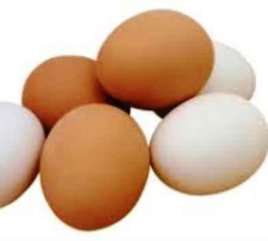 Fresh White and Brown Table Eggs /Fresh Chicken Table Eggs at farm price