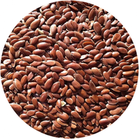 Wholesales Linseed flax seed brown flaxseed
