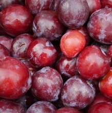 high quality Fresh plums for sale at cheap price