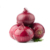Wholesale Onion Exporter From India