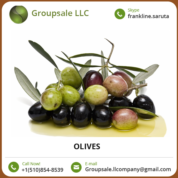 Precisely Processed Cholesterol Free Organic Olives at Market Leading Price