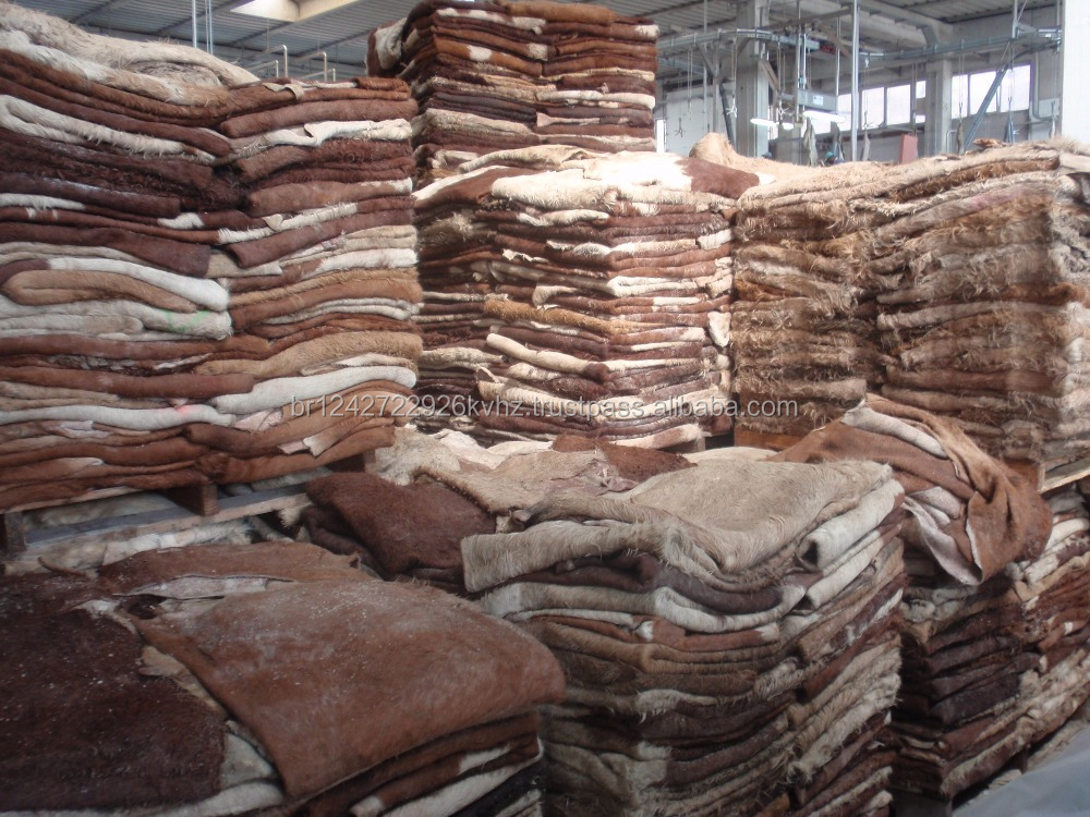 Super quality Wet salted and blue cow and donkey hides