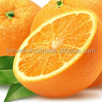 Egyptian Navel - valincia Oranges grade A