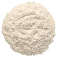 Vanilla Flavor Powder Food Ingredient Beverage