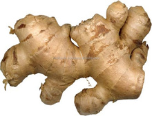 Vietnam Dried Ginger - High Quality - Natural Spicy Taste - Competitive Price