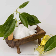 Camphor Oil in Bulk 100% Pure and Natural Essential Oil