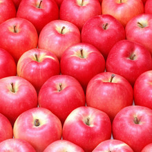 2015 New Crop fresh Gala Apple, sweet red Gala Apple Fruit from south africa