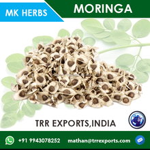 pkm1 moringa seeds for oil extraction high quality
