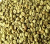 Robusta Coffee/Arabica Green Coffee Beans for Sale