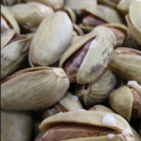 Best Quality Jumbo Pistachio Nuts / Raw and Roasted Pistachio Nuts / Sweet Pistachio