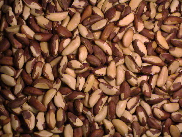 Organic and Conventional Brazil Nuts Raw Sizes Brazil Nuts Top Quality for sale Brazil