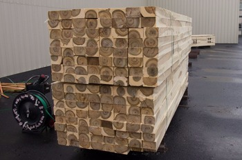 Poplar Squares, 40-100 mm thick