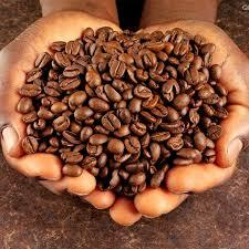 Roasted Arabica 100% Coffee Bean for sale