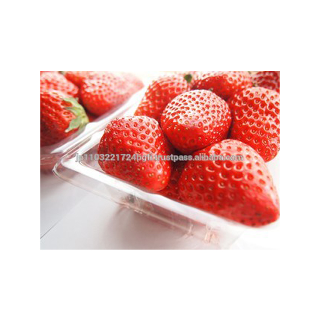 best brand cotton plastic packing bags for food