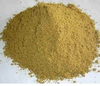 PURE SEA FISH MEAL/ CAT FISH MEAL - ANIMAL FEED FROM VIETNAM (AMY 84 1683 655 628)