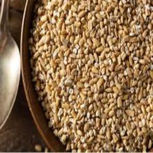 Rolled Oats Wholesale