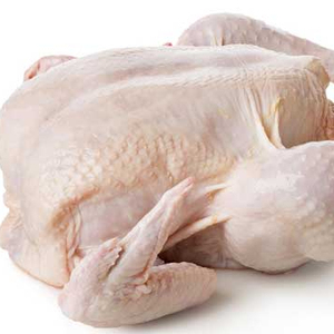 High Quality Whole Halal Frozen Chicken Supplier from Brazil