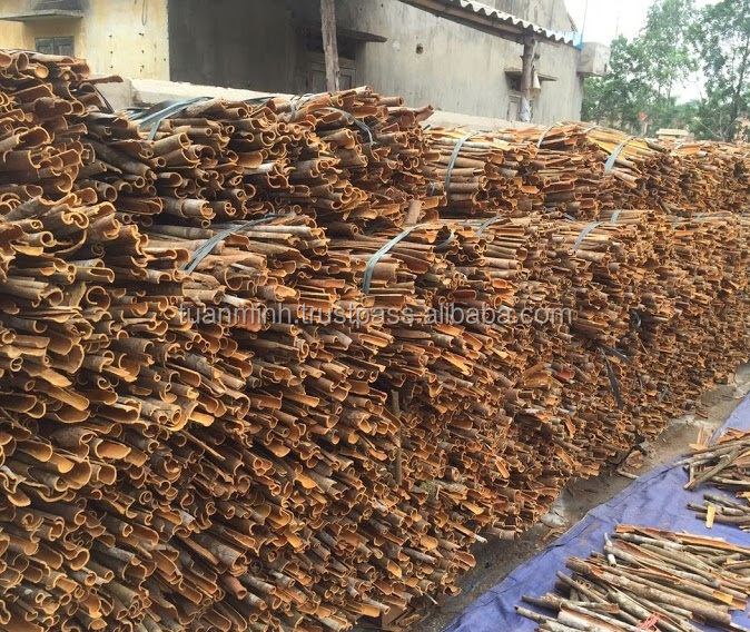 yellow or reddish color split cassia / cinnamon 2017 crop(skype: tuanminhco)