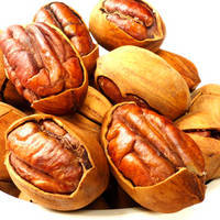 Pecan Nut Type Pecans Nuts
