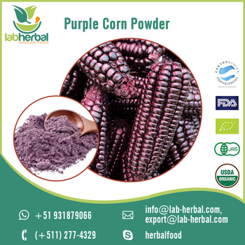 Rich Extract Purple Corn Powder for Sale at Wholesale Price