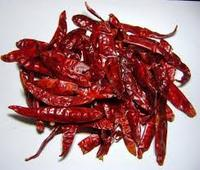Dry Red Chili WELL DRIED