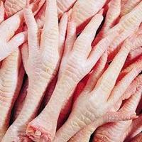 Halal / Fresh / Frozen / Processed Chicken Feet / Paws / Claws