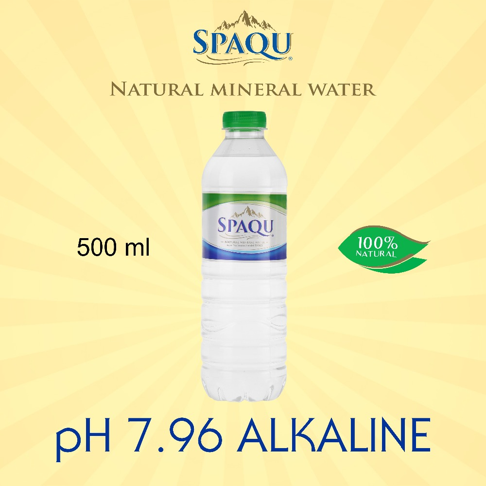 Natural Alkaline Spring Source Mineral Water 0.5 L