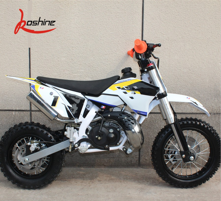 CE 2 Stroke Mini Kids Gas Pocket Bike 50cc Dirt Bike