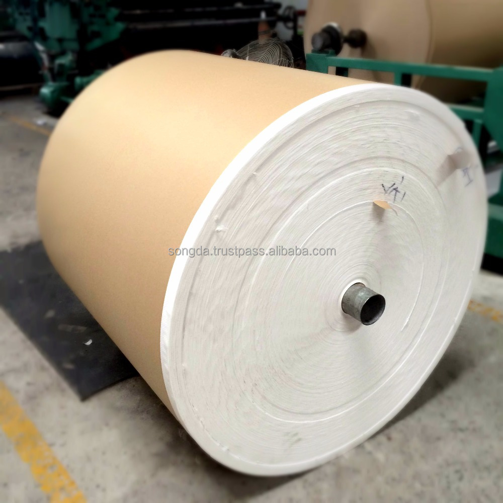 Plastic PP Woven Fabric coated with kraft paper in roll