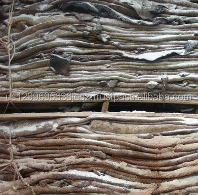 Salted, Non-Salted Donkey Hides, Donkey Skin, Donkey Leather for sale